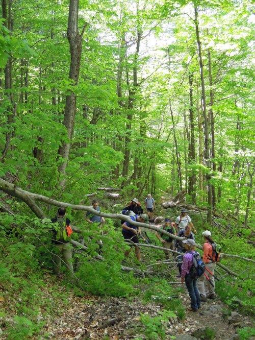 2013-05-GMC_Trail